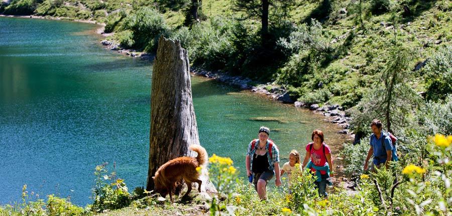 Wandern mit Hund am Steirersee